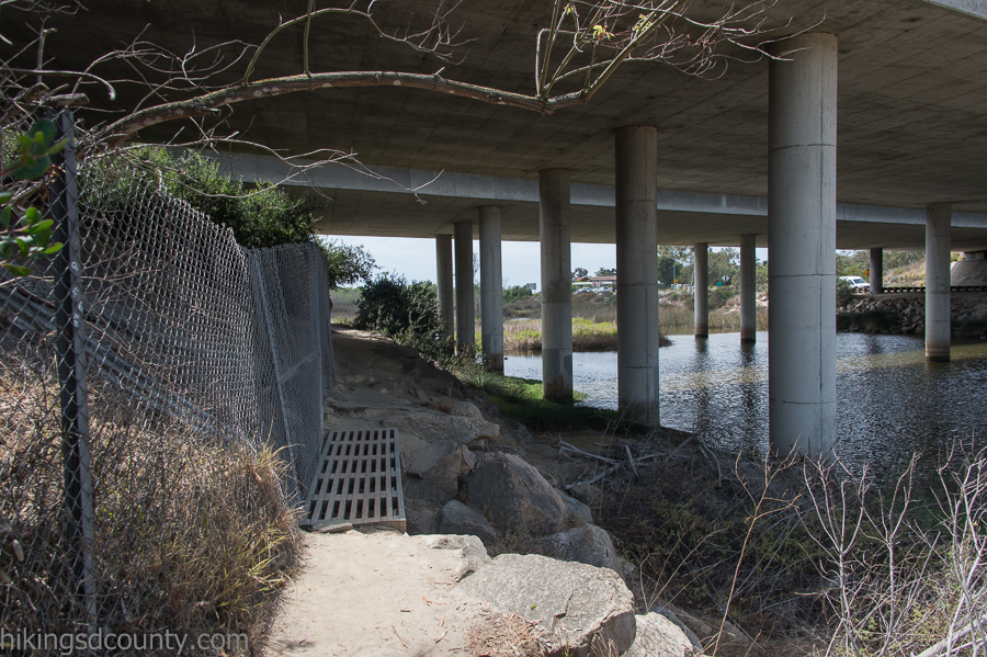 Going under the freeway to get to the other half of San Elijo Lagoon