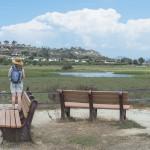 View from the peninsula at San Elijo Lagoon