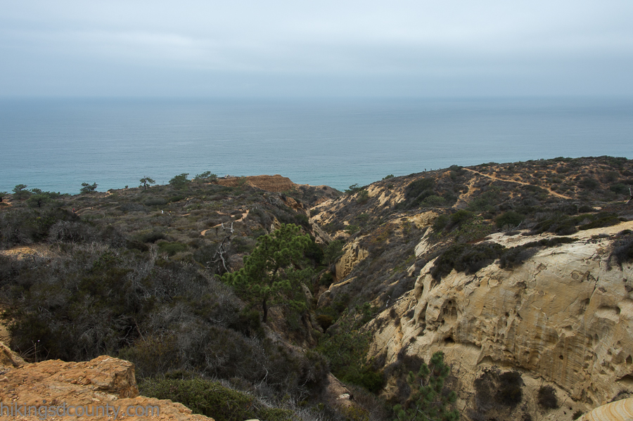 View from the Razor Point trail at Torrey Pines