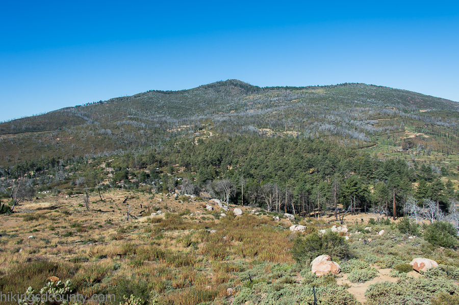 View of Cuyamaca Peak from the Stonewall Peak trail