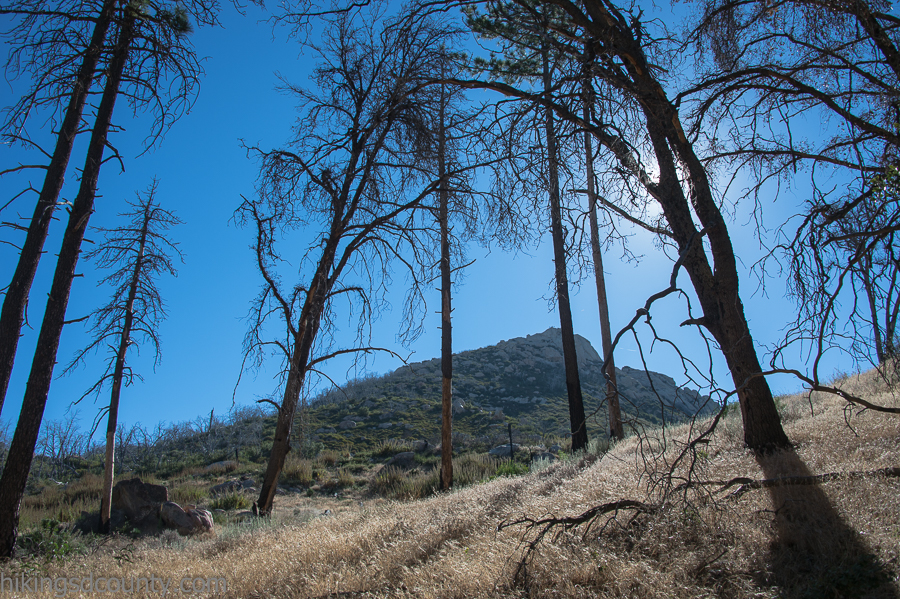 Stonewall Peak trail in Cuyamaca Rancho State Park