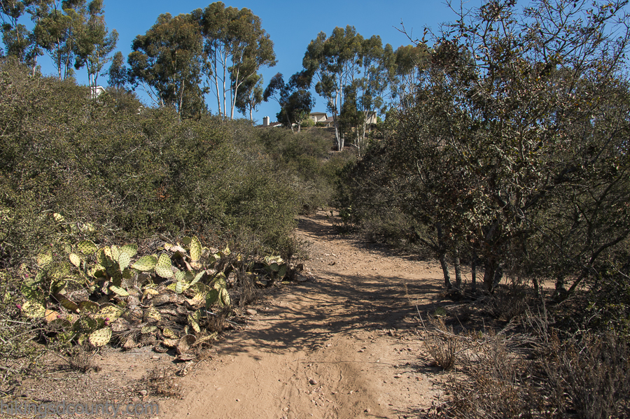 Access trail leading from Tecolote Canyon to a local neighborhood