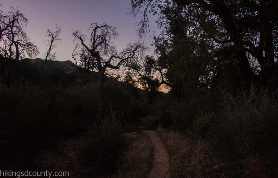 The Lower Descanso Creek Trail at dawn
