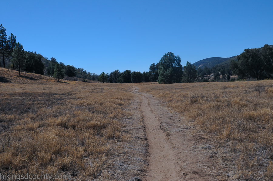 The East Side trail passes through open grassy plains