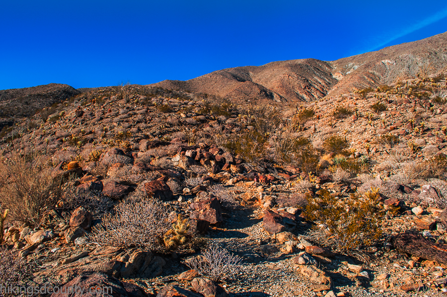 Colorful rocks on the Cactus Loop trail