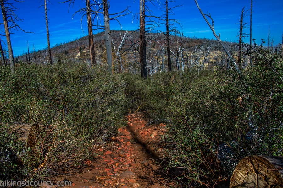20141116CuyamacaPeak_DSC1354-Edit