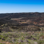 Goodan Ranch Sycamore Canyon