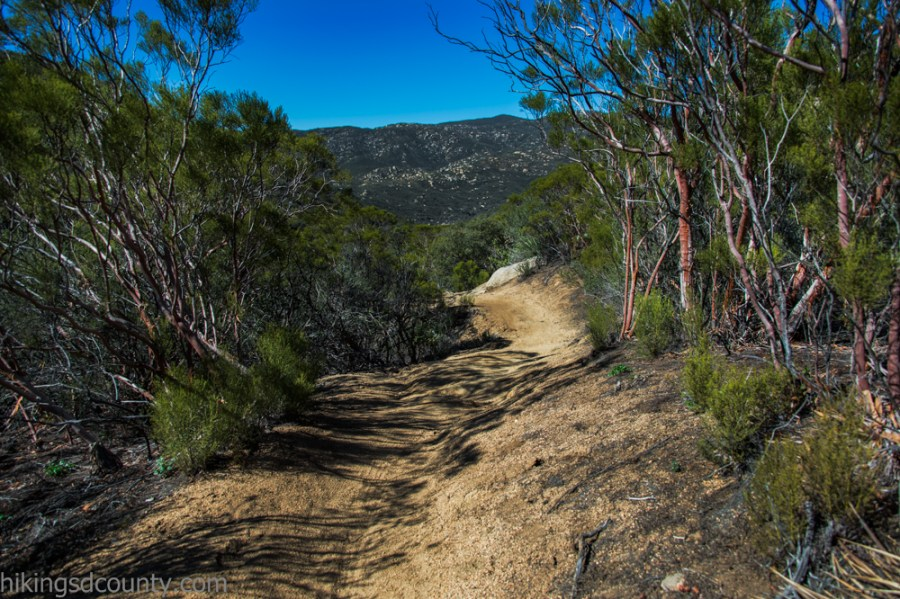 Noble Canyon - Hiking San Diego County