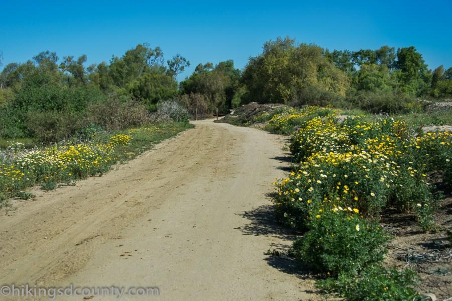 20160331_DSC0138-Tijuana_River_Valley