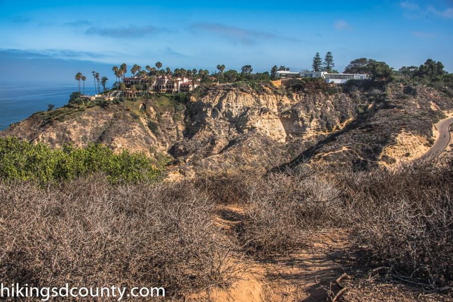 Scripps_Coastal_Reserve_DSC_8268-Edit