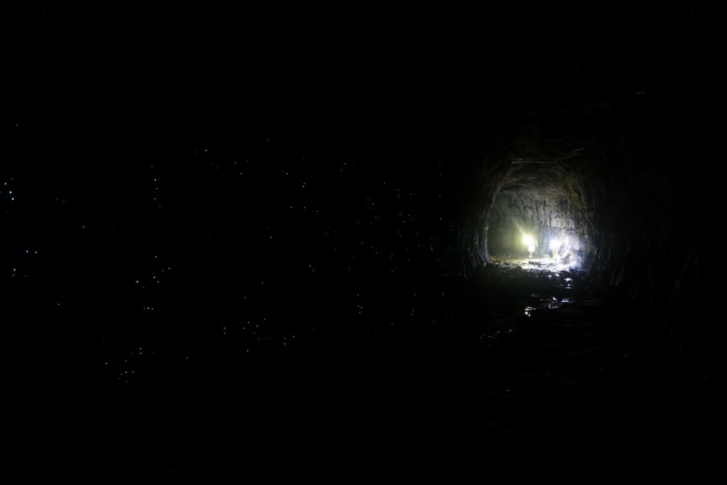 Glow worms in the 400m long tunnel