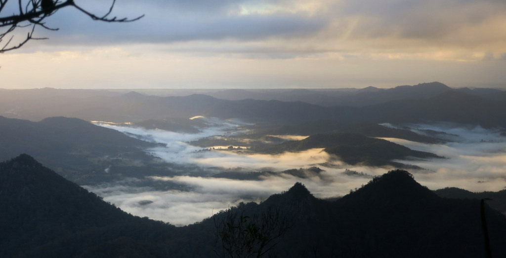 View from Mount Warning summit