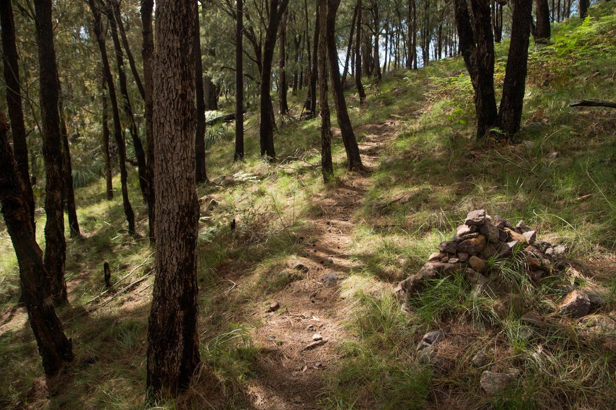 mg 9539 lrp 2 Guide to West Head bushwalks