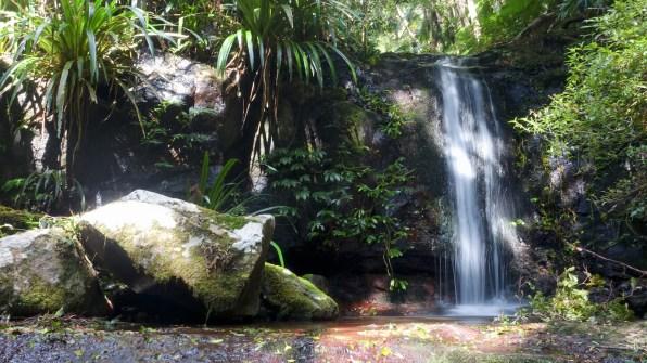 Gwongarragong Falls on the Coomera Circuit track (Lamington National Park)