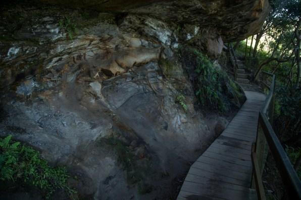Boardwalk through Sydney National Park