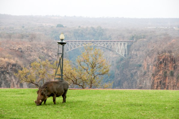 Looking from Victoria Falls Hotel to the bridge separating Zambia and Zimbabwe