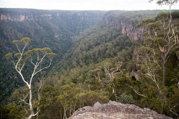 Looking north-east toward Fitzroy Falls from Yarrunga Lookout