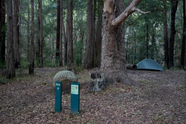Cronan Creek 9 camp site at Mount Barney