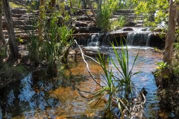 img 3693 lr Tabletop Track, Litchfield National Park