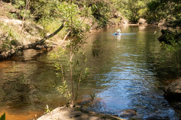 Swimming down Glenbrook Creek just before Duck Hole