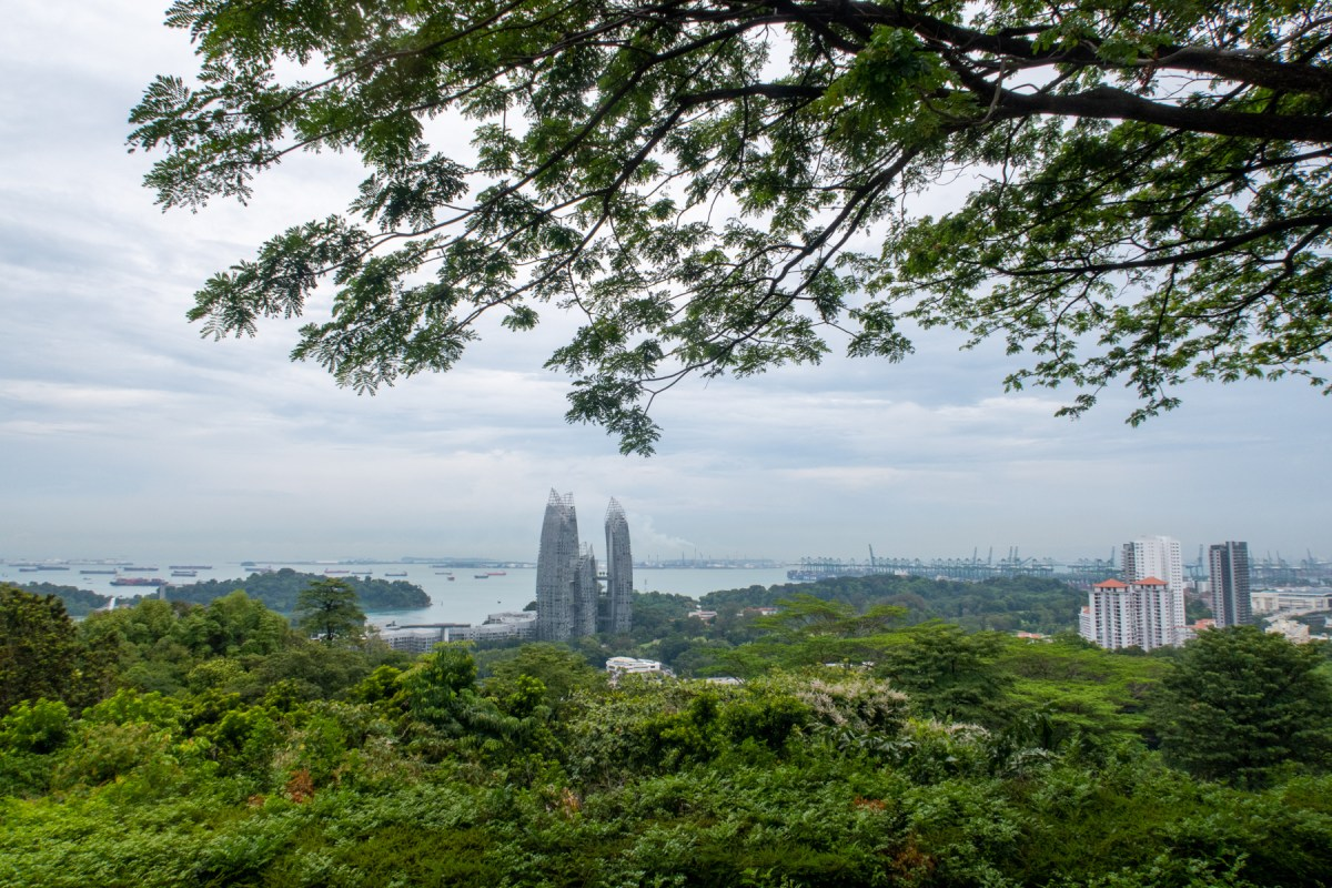 View from Southern Ridges Walk