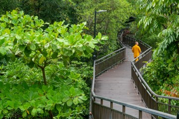 img 1988 lr Southern Ridges Walk (Singapore)