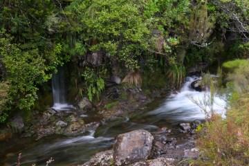 Lower Silica Rapids
