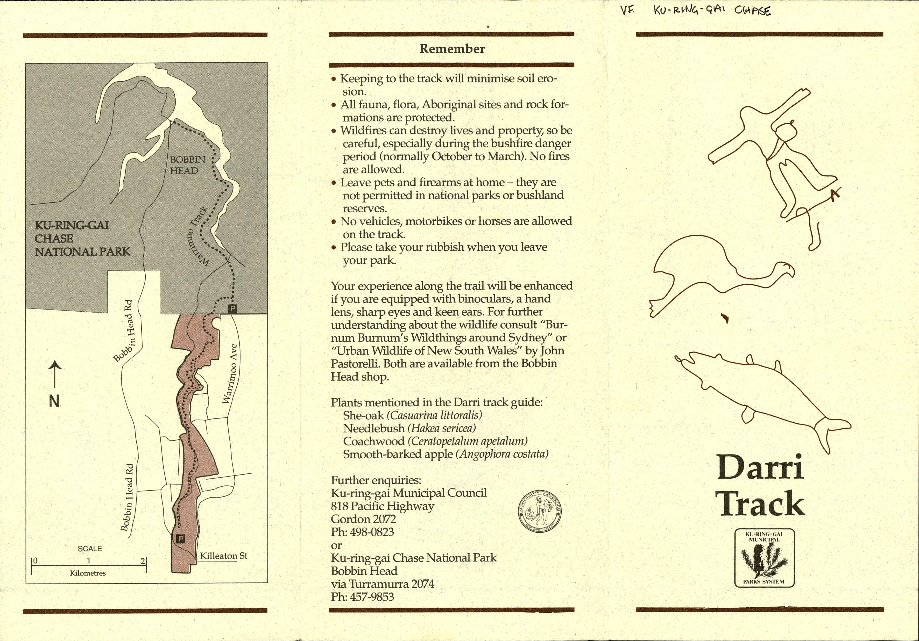 Ku Ring Gai Chase S601365000.pdf.00059 Darri Track (North Turramurra)