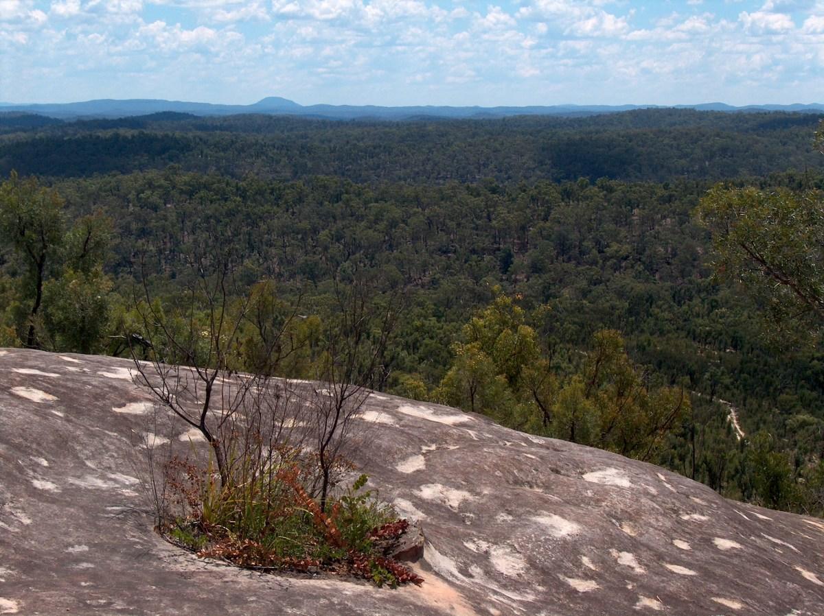hpim1332 Devils Rock (Burragurra)