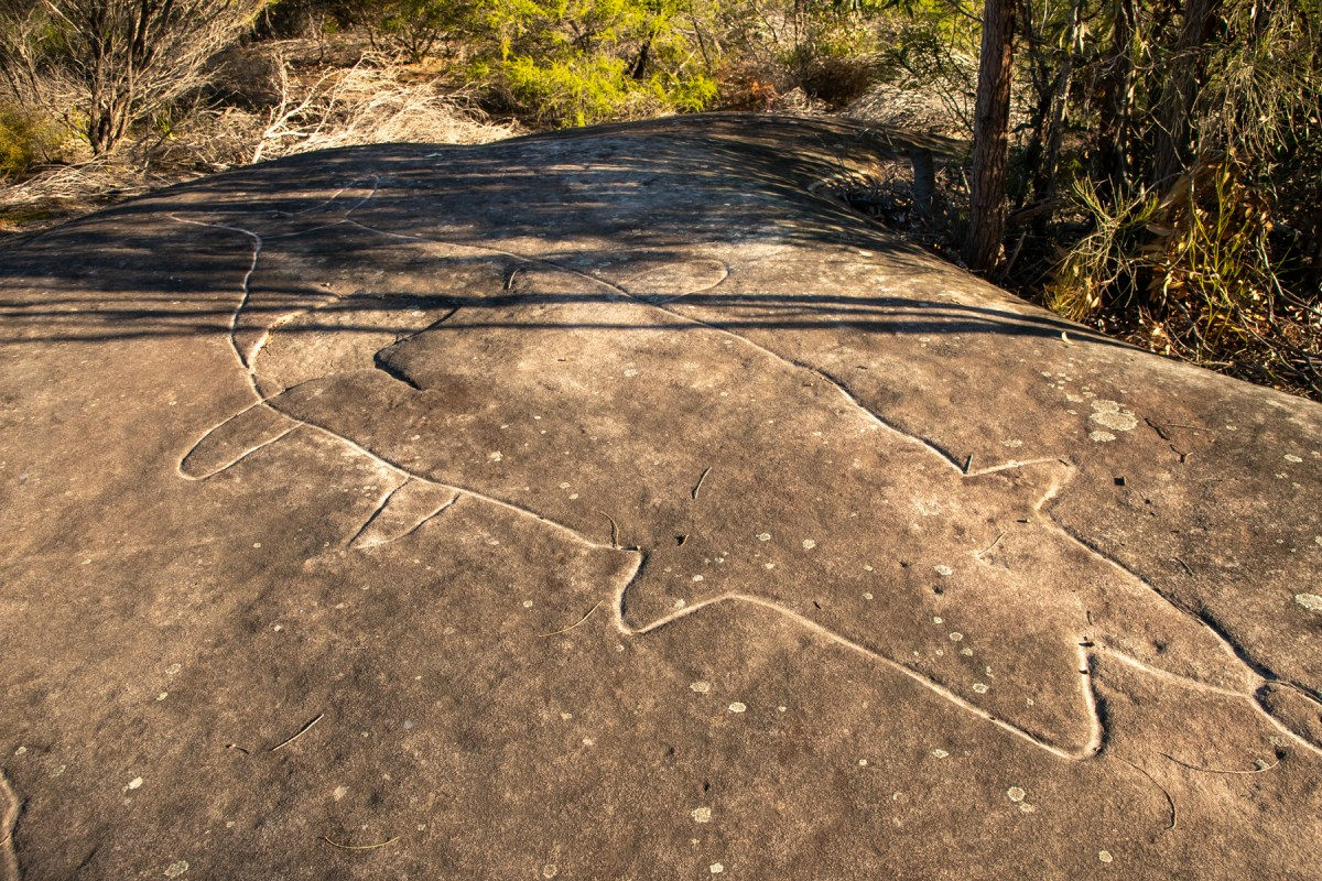 img 5601 lr Bantry Bay Aboriginal Site