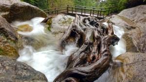 dsc00758 lr Waterfalls Search
