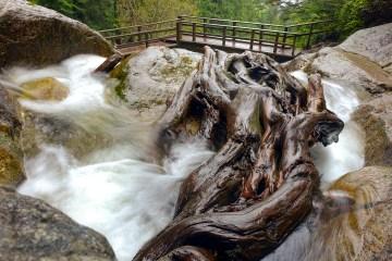 dsc00758 lr Olesen Creek Cascades
