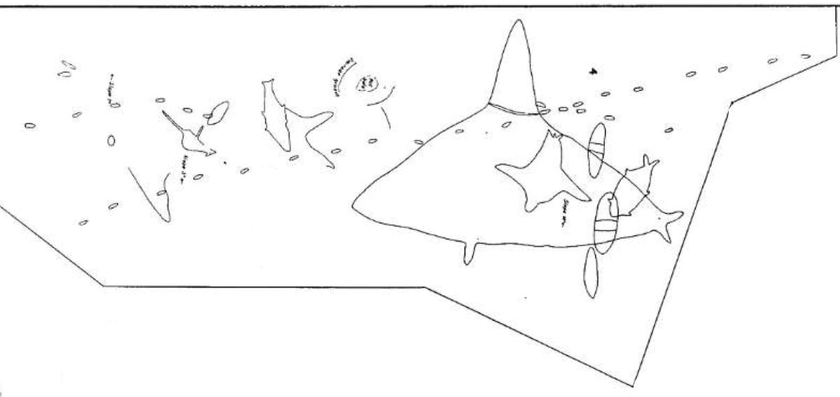 Engraving-PLATE-XVII-Fig4