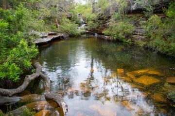awat5922 lr Emerald Pool (Popran NP)