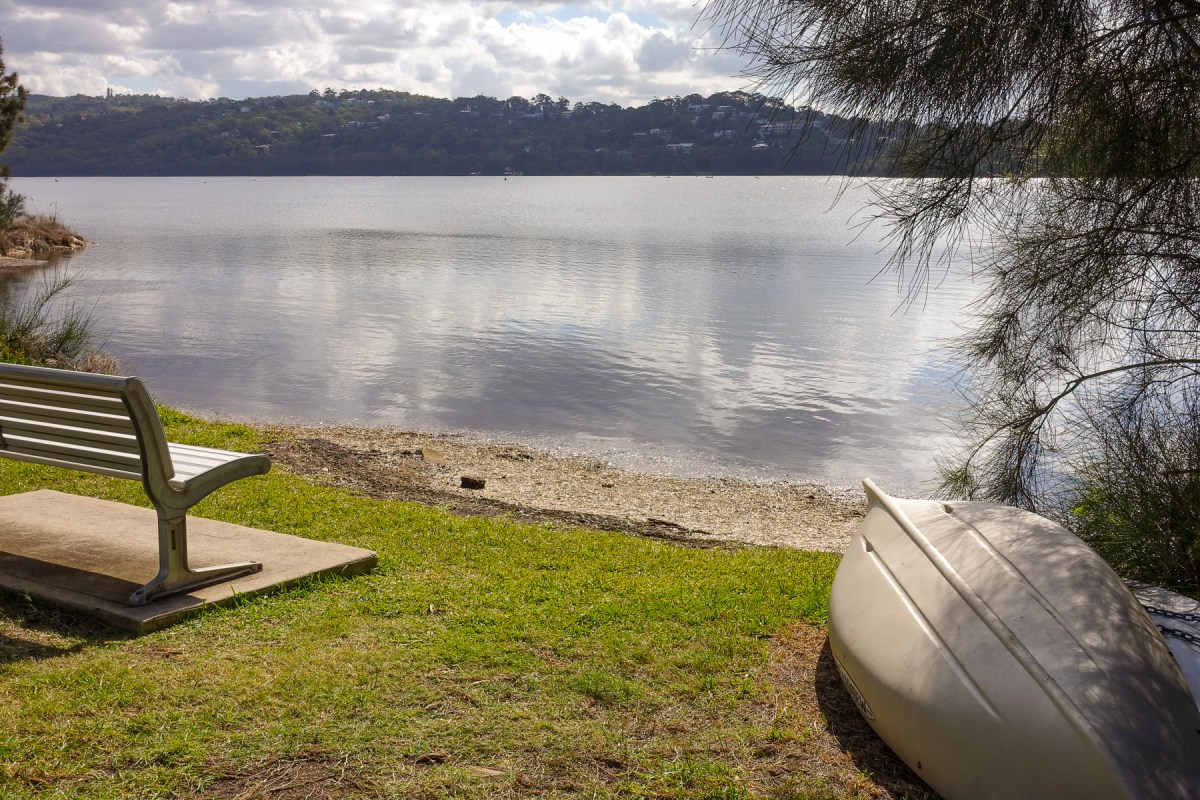 Narrabeen Lake is good for bushwalking with dogs