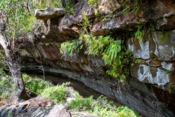 awat8459 lr Berowra Waters (Turner Firetrail) Rockshelter