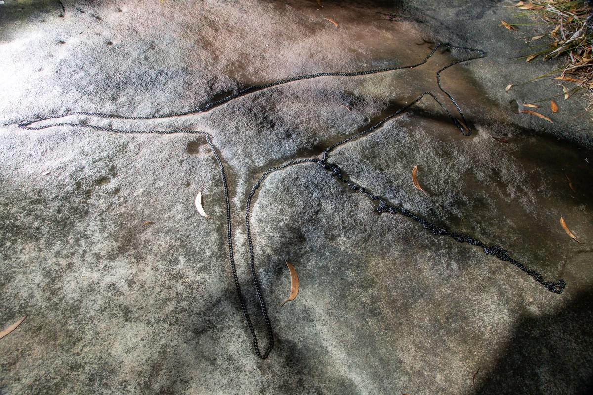 awat8816 lr Aboriginal Art - Ku-ring-gai Chase