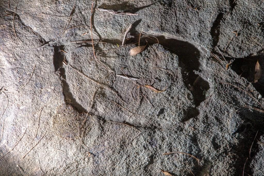 AWAT1504 LR Mt Ku-ring-gai Aboriginal site