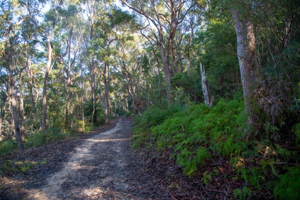 AWAT4887 LR Sams Creek Loop