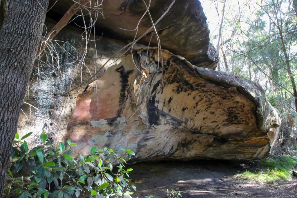 AWAT5725 LR Great Mackerel Shelter (SWA 1)