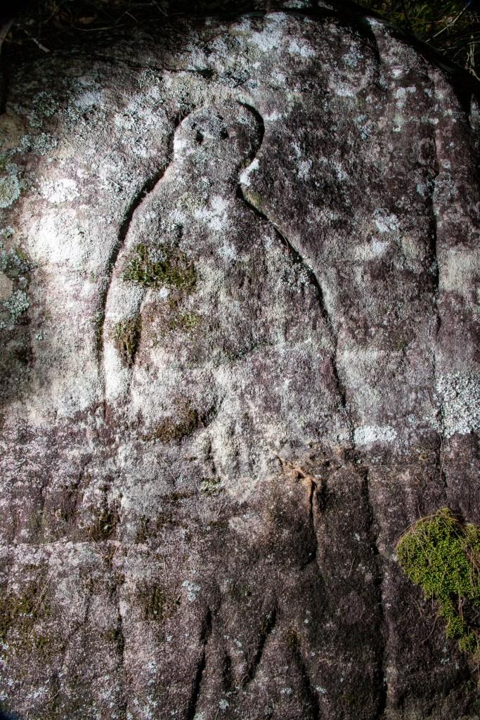 AWAT9426 LR Cowan Creek frieze engraving