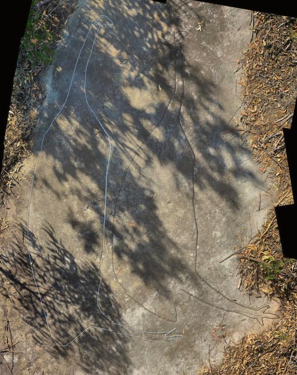 Montage2 stitch LR 2 Smiths Creek Ridge Emus
