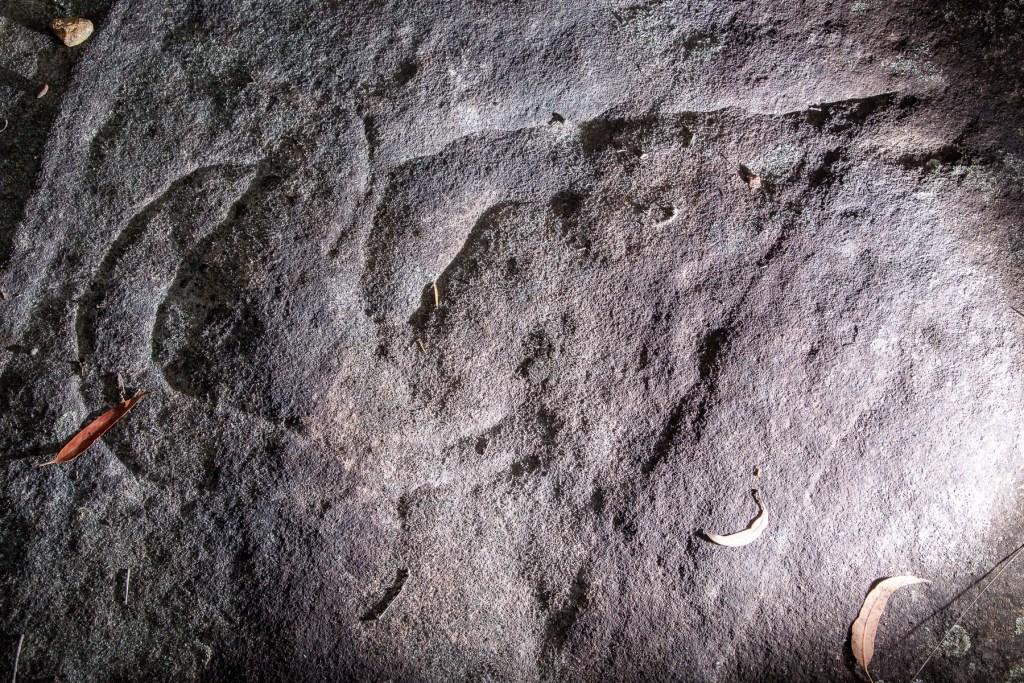 AWAT6530 LR Myall Trail Aboriginal sites (Ku-ring-gai Chase)