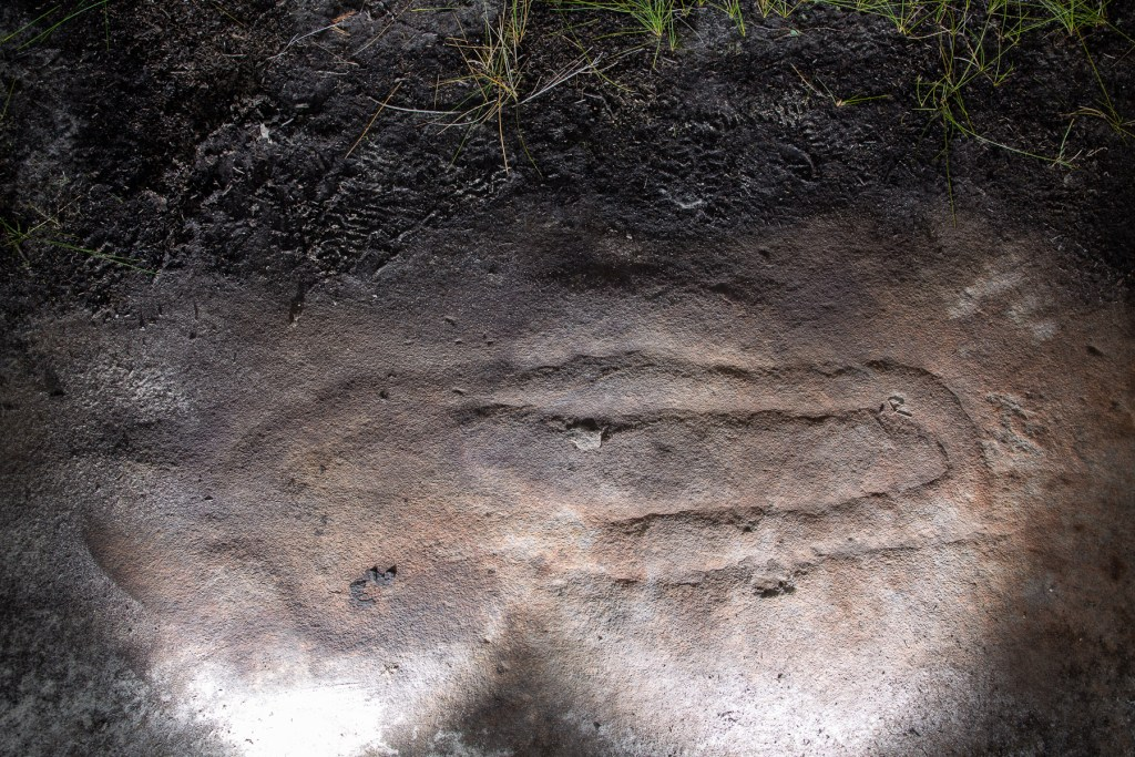 Aboriginal engraving of doubled-up snake near Resolute Track