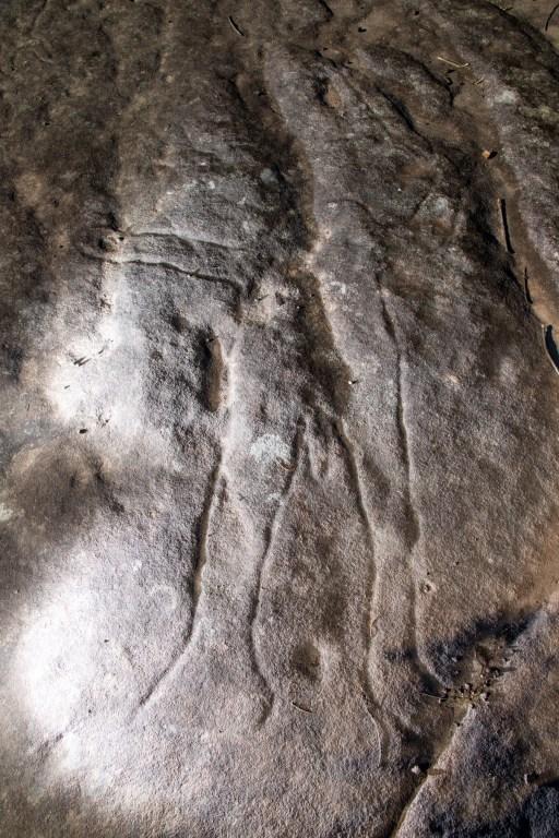 AWAT0160 LR Wheeler Heights Aboriginal Site