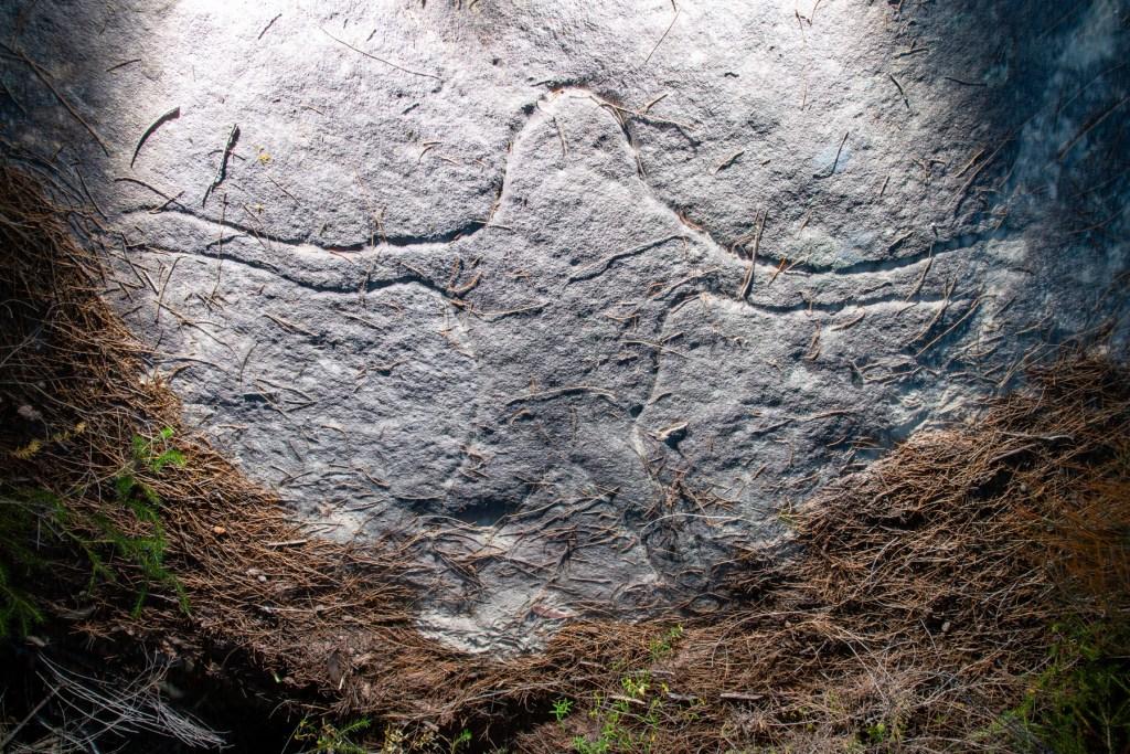 AWAT0729 LR Wheeler Heights Aboriginal Site