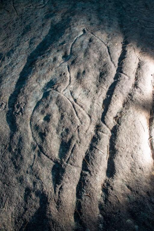 AWAT0733 LR Wheeler Heights Aboriginal Site