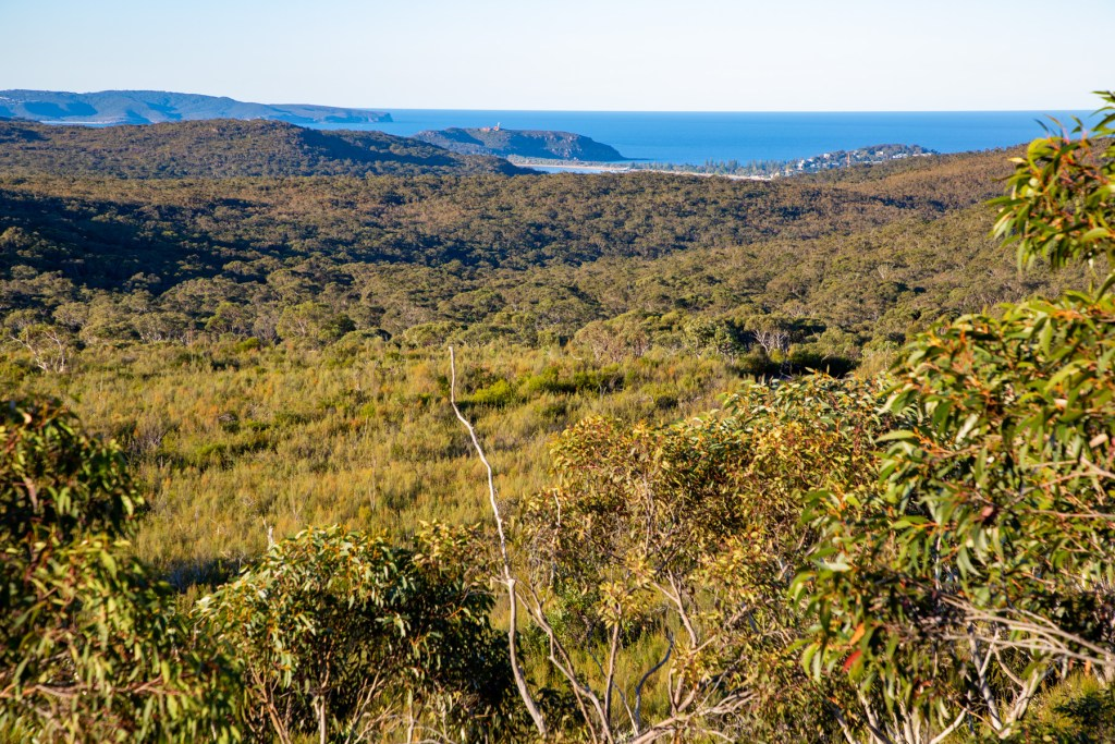 View from Willunga Trig Track