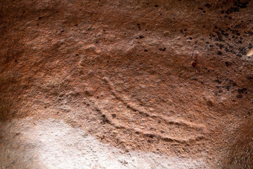 AWAT9992 LR Cotton Tree Creek engraving site