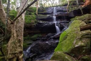 Kikkiya Waterfall along Shrimptons Creek